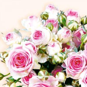 Guardanapo Decoupage Tulip Arts 33x33cm Cod 13305140